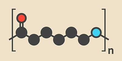 Polymer Photograph - Polycaprolactam Polymer Molecule by Molekuul