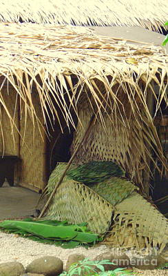 Photograph - Polynesian Hut by Rachel Munoz Striggow