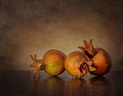 Photograph - Pomegranate IIi by David and Carol Kelly