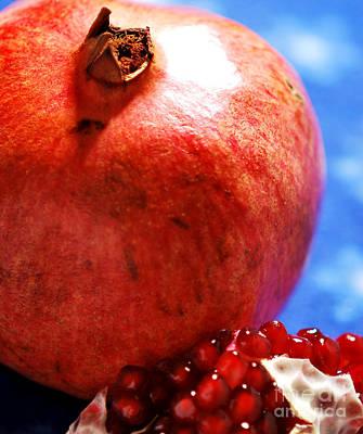 Pomegranate Photograph - Pomegranate  by Nancy Mueller