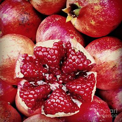 Sour Photograph - Pomegranate Star by Leyla Ismet