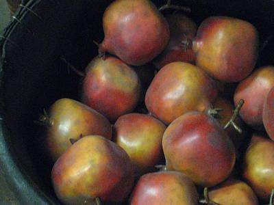 Photograph - Pomegranates  by Carolyn Jacob