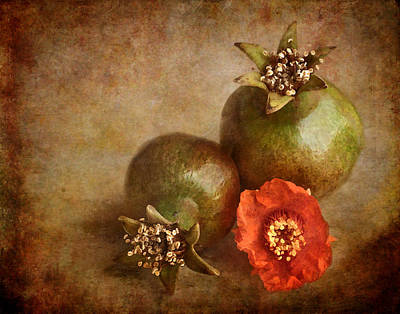 Photograph - Pomegranates by David and Carol Kelly