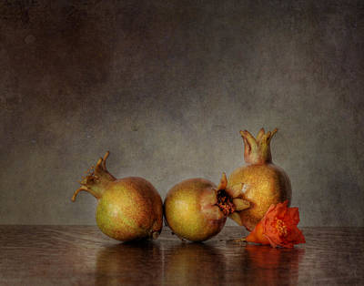 Photograph - Pomegranates II by David and Carol Kelly
