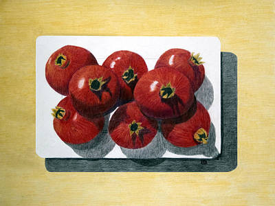 Painting - Pomegranates On A Plate by Barbara J Blaisdell