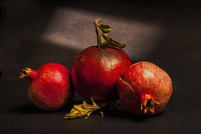 Painterly Photograph - Pomegranates by Peter Tellone