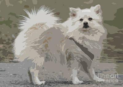 Pomeranian Dog Art Print by Jivko Nakev