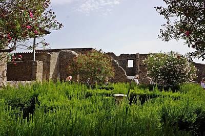 Photograph - Pompei-82 by Rezzan Erguvan-Onal