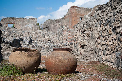 Food And Flowers Still Life - Pompeii ruins 1  by Zina Zinchik