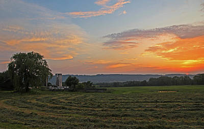 Pompey Hay - June Sunset Art Print