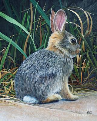 Painting - Pompey's Pillar Rabbit by Rosellen Westerhoff