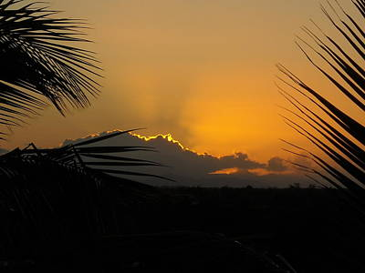Photograph - Ponce Sunrise by Daniel Sheldon