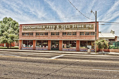 South Louisiana Photograph - Ponchatoula Feed And Seed by Scott Pellegrin