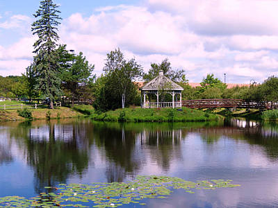 Photograph - Pond And Gazebo by Janice Drew