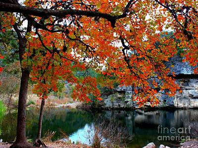 Photograph - Fall At Lost Maples State Natural Area by Michael Tidwell
