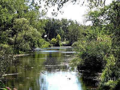 Photograph - Pond At Tifft Nature Preserve Buffalo New York  by Rose Santuci-Sofranko