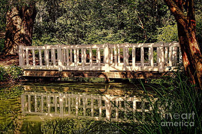 Susan Jones Photograph - Pond Bridge At Hopeland Gardens by Susan Jones