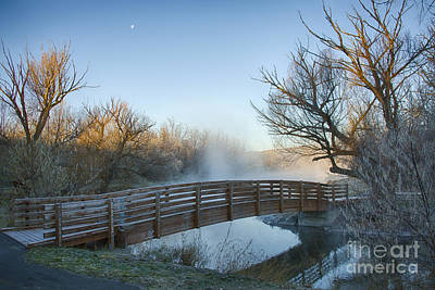 Photograph - Pond Crossing by Idaho Scenic Images Linda Lantzy