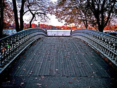 Pond Footbridge Art Print