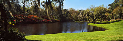 Pond In A Garden, Middleton Place Art Print by Panoramic Images