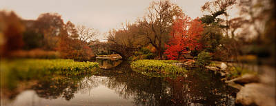 Public Park Photograph - Pond In A Park, Central Park by Panoramic Images
