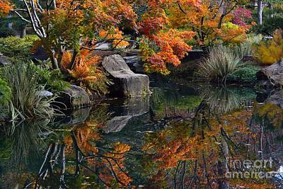 Pond In Autumn Art Print