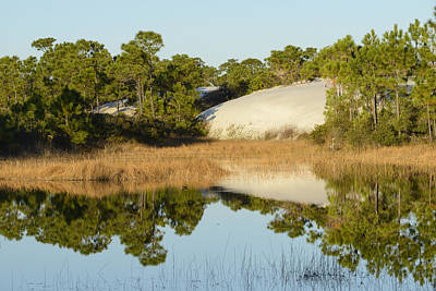 Pond In The Dunes Print by Christian Heeb