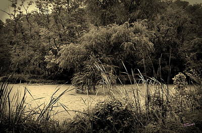 Photograph - Pond by Karen Kersey