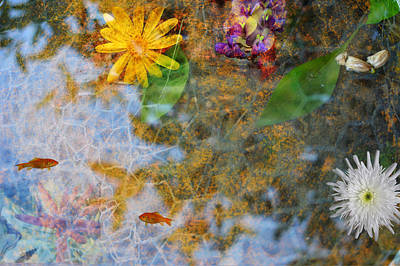 Pond Or Garden? Art Print