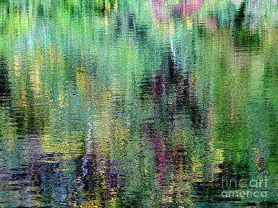 Photograph - Pond Palette by Ed Weidman