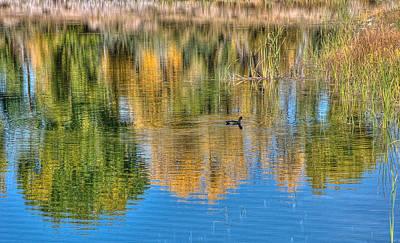 Photograph - Pond Reflection by Britt Runyon