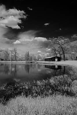 Pond Reflection Art Print
