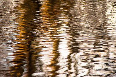 Pond Reflections #2 Art Print