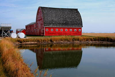 Print featuring the photograph Pond Reflections by Larry Trupp