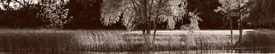 Pond Sunset Panorama Bw Original
