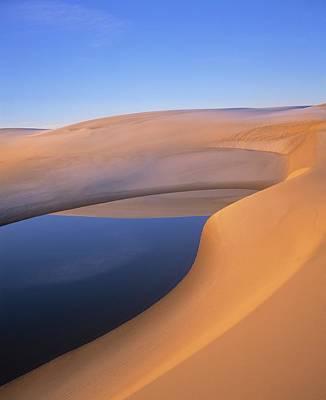 Pond, Umpqua Dunes, Oregon, Usa Art Print