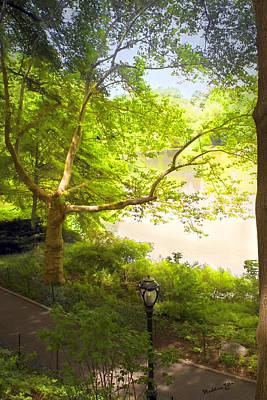 Pond View - Central Park - Nyc Art Print