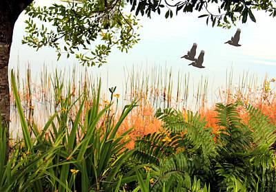 Pond View Print by Rosalie Scanlon