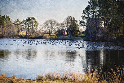 Shed Digital Art - Pond With Geese by Brian Wallace