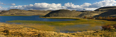 Pond With Sedges, Torres Del Paine Art Print by Panoramic Images