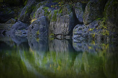 Photograph - Ponderosa Paradise by Sherri Meyer