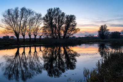 Photograph - Ponds In Lomna 2 by Tomasz Dziubinski