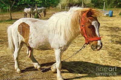 Stone Pony Painting - Ponies On The Farm by Odon Czintos