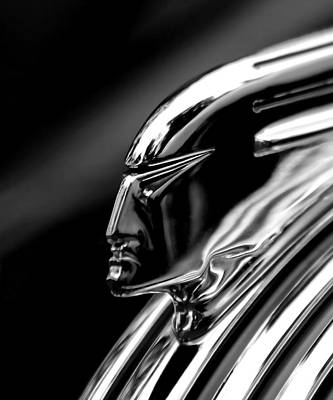Photograph - Pontiac Hood Ornament by Wes and Dotty Weber