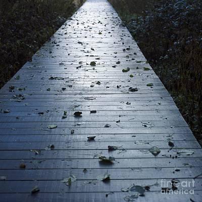 Fallen Leaf Photograph - Pontoon by Bernard Jaubert