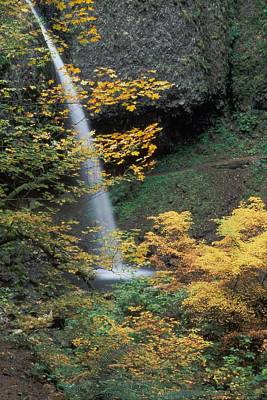 Photograph - Ponytail Falls by Ken Dietz