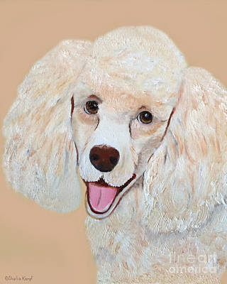 Painting - Poodle Art Print by Shelia Kempf
