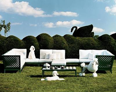 Poodle Photograph - Poodles And Sectional Sofa Outside by Thomas Loof