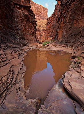 Photograph - Pool Of North Canyon by Britt Runyon