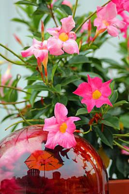 Pool Side Flowers Art Print